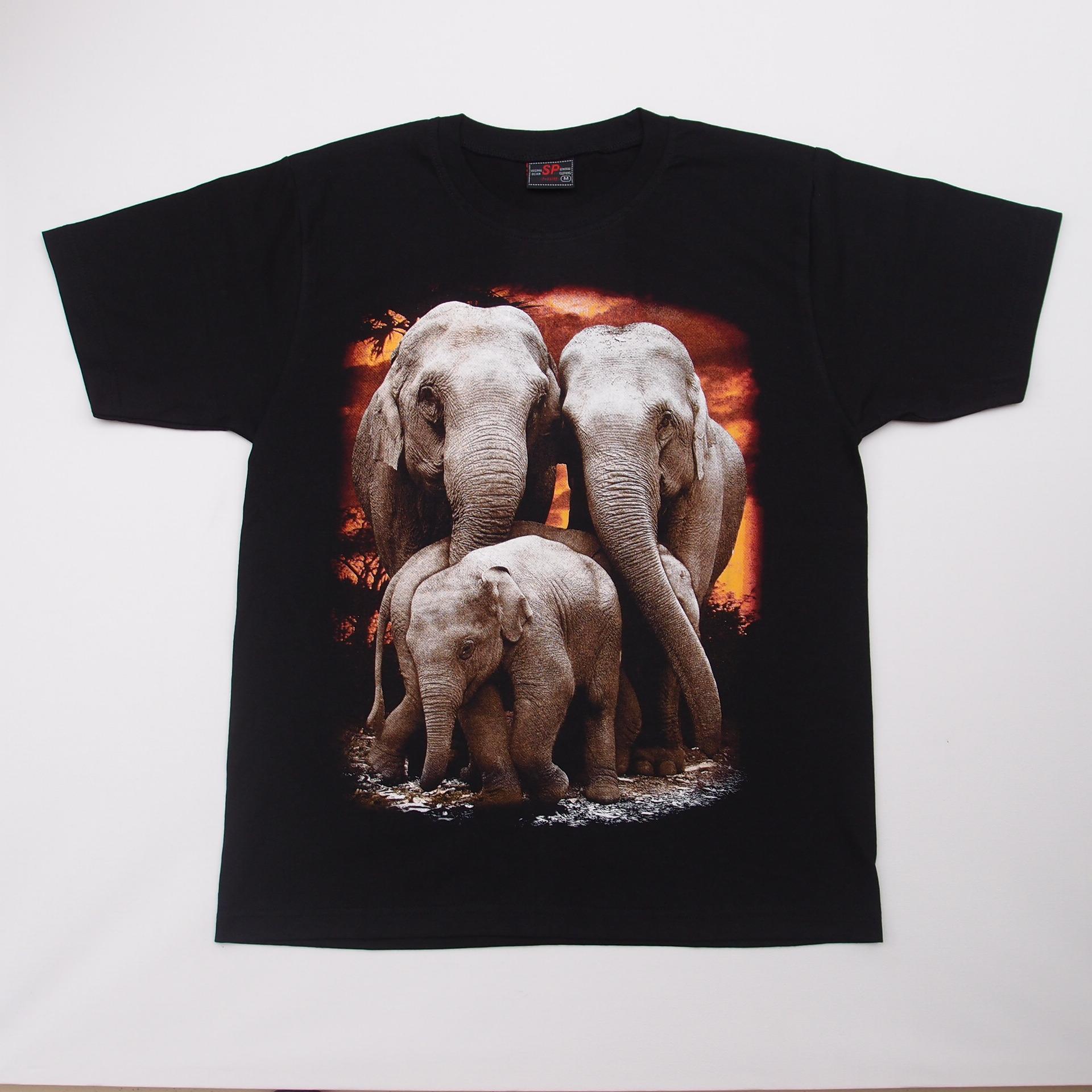 41 014 elephant